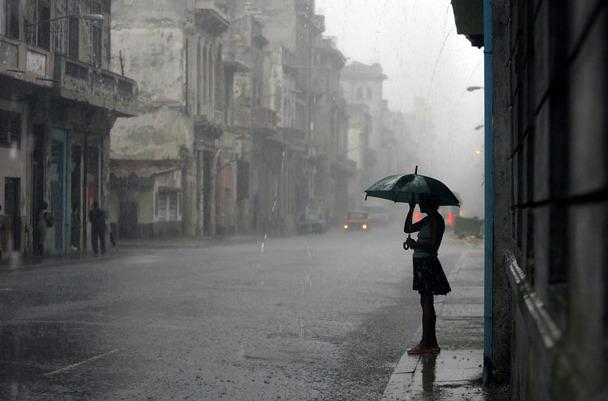 비가 오는 날.